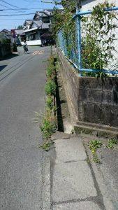 側溝の清掃 及び 草取